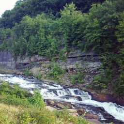 Near the dam at Yellow Creek State Park.